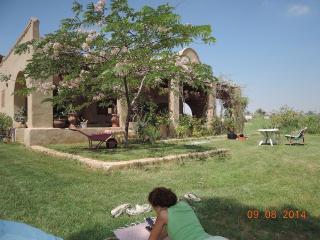 Guest house du lac Qarun: Chez Emma - Ibshaway vacation rentals