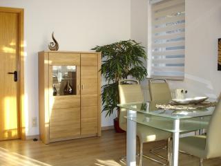 1 bedroom Apartment with Internet Access in Chemnitz - Chemnitz vacation rentals
