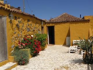 Finca El Encanto -Icod de los Vinos - Icod de los Vinos vacation rentals