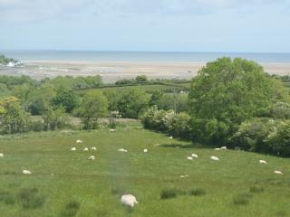 2 bedroom Cottage with Internet Access in Pentraeth - Pentraeth vacation rentals
