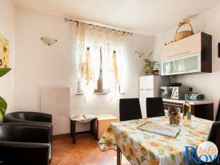 Appartamento Bruni 4+1 - Rovinj vacation rentals
