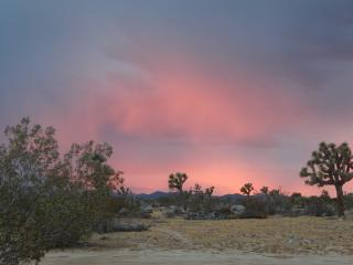 2 bedroom House with Deck in Yucca Valley - Yucca Valley vacation rentals
