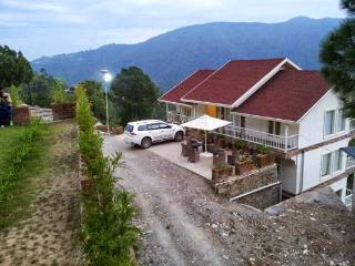 Snowvale- 4BHK Ultra Luxury Cottage at Chail, HP - Chail vacation rentals