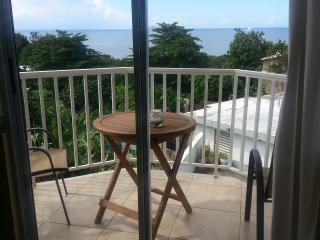 Cerca de Playa - Rincon vacation rentals