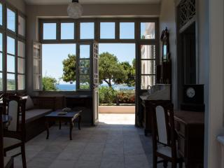 Nice House with Internet Access and A/C - Poseidonia vacation rentals