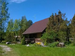 Fantastic house near to the beach - Viinistu vacation rentals