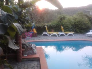 Casavacanze Homeforholidays Agli Olivi - Massarosa vacation rentals