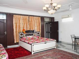 Spíti Penthouse *Inaugral Discount* - New Delhi vacation rentals
