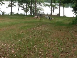 Northwoods Nest, Ripley Lake, WI - Sarona vacation rentals