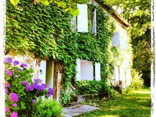 superbe maison de campagne Haut Languedoc - La Salvetat-sur-Agout vacation rentals