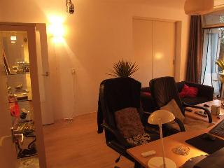 Tour de France, appartmentf for rent - Utrecht vacation rentals