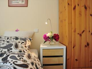 """Ilonka's B&B """"home away from home"""" - The Hague vacation rentals"""