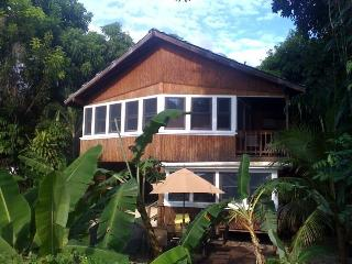 Tres Amigos Beach House,walk out back to the beach - Rincon vacation rentals