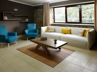 Nice 3 bedroom Sapanca Villa with Internet Access - Sapanca vacation rentals