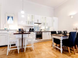 140m2 sup.3bedroom apartment; A/C and WI-FI CITY34 - Budapest vacation rentals