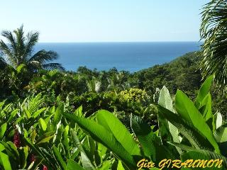 Gîte GIRAUMON seaview  in tropical garden - Deshaies vacation rentals