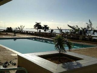 Lovely 1 bedroom Apartment in Kingston - Kingston vacation rentals