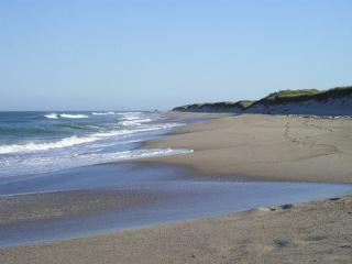 Beautiful Cape Cod Home Minutes to Nauset Beach! - Orleans vacation rentals