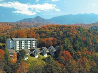 MountainLoft - Gatlinburg vacation rentals