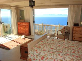The Flying Penguin - Penthouse - Simon's Town vacation rentals