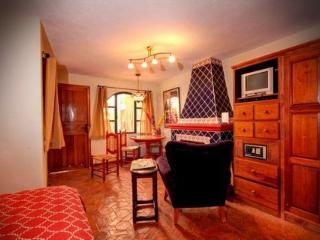 Actor's Studios: Ricardo Montalban, studio CENTRO - San Miguel de Allende vacation rentals
