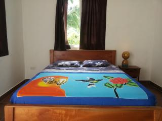 Nice House with Internet Access and Parking Space - Torio vacation rentals