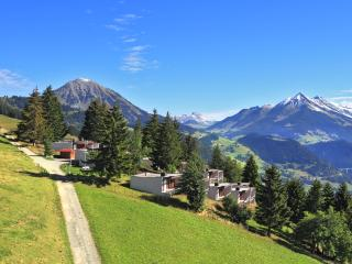 2 bedroom Bungalow with Internet Access in Leysin - Leysin vacation rentals