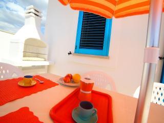 Villetta a 70 mt da mare. Spiaggia di sabbia vicin - Torre San Giovanni vacation rentals