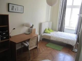 4 bedrooms renovated centrally located flat - Budapest vacation rentals