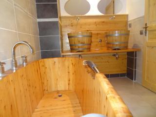 Gite avec spa, montagne, lac de serre Ponçon - Crots vacation rentals