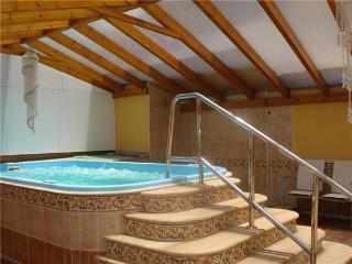 33393-Apartment Icod de los Vi - Icod de los Vinos vacation rentals