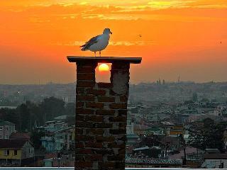 Walk 2 Blue Mosque & Hagia Sophia - Istanbul vacation rentals