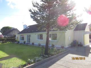 Comfortable Cottage with Internet Access and Cleaning Service - Cashel vacation rentals