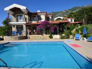 Holiday Villa With Private Pool and Garden - Oludeniz vacation rentals