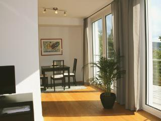 Romantic 1 bedroom Condo in Wetzlar - Wetzlar vacation rentals