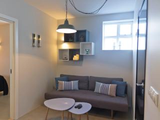 Cozy right in the center, 2 bdr apartment - Reykjavik vacation rentals