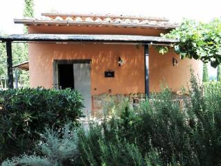 Iris - Castiglione Del Lago vacation rentals
