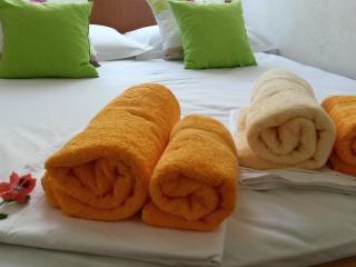 Spacious sea view 6+2 apartment - Makarska vacation rentals