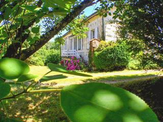 Beautiful mansion in Charente-Maritime w/WiFi, huge garden, private river access, near Saint Emilion - Montguyon vacation rentals