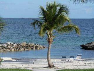 REGATTAS CONDO #14 from $1,750/week - Marsh Harbour vacation rentals