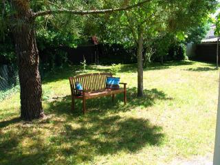 maison indépendante au calme dans un petit village - Sainte-Eulalie-en-Born vacation rentals