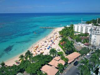 Million Dollar View/ Centrally Located 1BR - Montego Bay vacation rentals