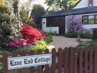 Nice 1 bedroom Stockland Cottage with Internet Access - Stockland vacation rentals