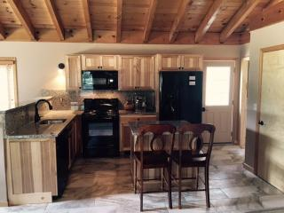 Gorgeous 3 bedroom House in Wilmington - Wilmington vacation rentals