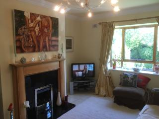3 bedroom House with Internet Access in Killenard - Killenard vacation rentals