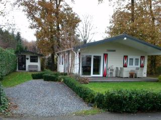 Chaletbos Voorthuizen nr 913 Sophia Hoeve - Voorthuizen vacation rentals