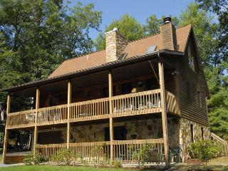 Charming 3 Bedroom Cabin with hot tub, privacy, & outdoor fire pit! - Swanton vacation rentals