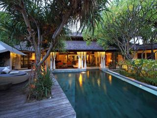 Wonderful Luxury Heart of Seminyak - Seminyak vacation rentals