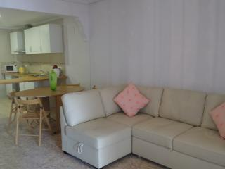 Gorgeous Condo with Short Breaks Allowed and Toaster - Santa Pola vacation rentals