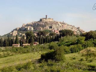 Relaxing Villa + WiFi at 30min from Rome - Palombara Sabina vacation rentals